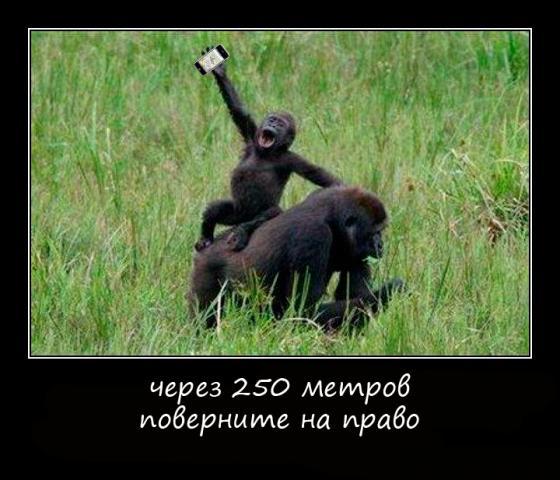 post-39343-1279552516,48_thumb.jpg