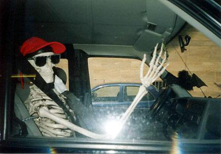 skelet_905.jpg
